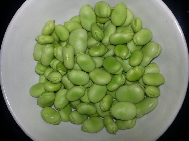 Depodded broad beans..