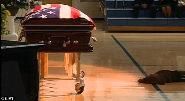 Navy SEAL Jon Tumilson's Labrador retriever Hawkeye was loyal to the end, as he refused to leave his master's side during an emotional funeral.