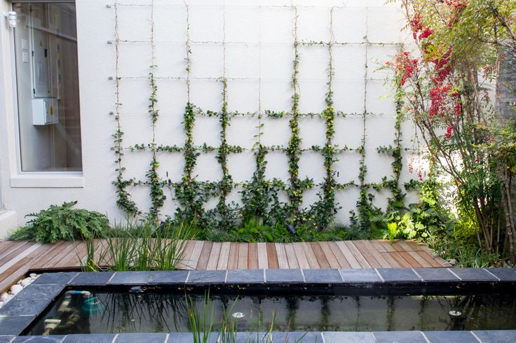In a tranquil contemporary garden, a full scale wall trellis turns what would…