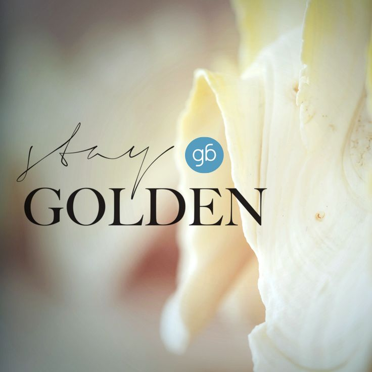 Stay Golden..@goldenbeachhotel #goldenbeachhotel #goldenbeach #beach #paros #holidays #greece #hotel #summer #toparos