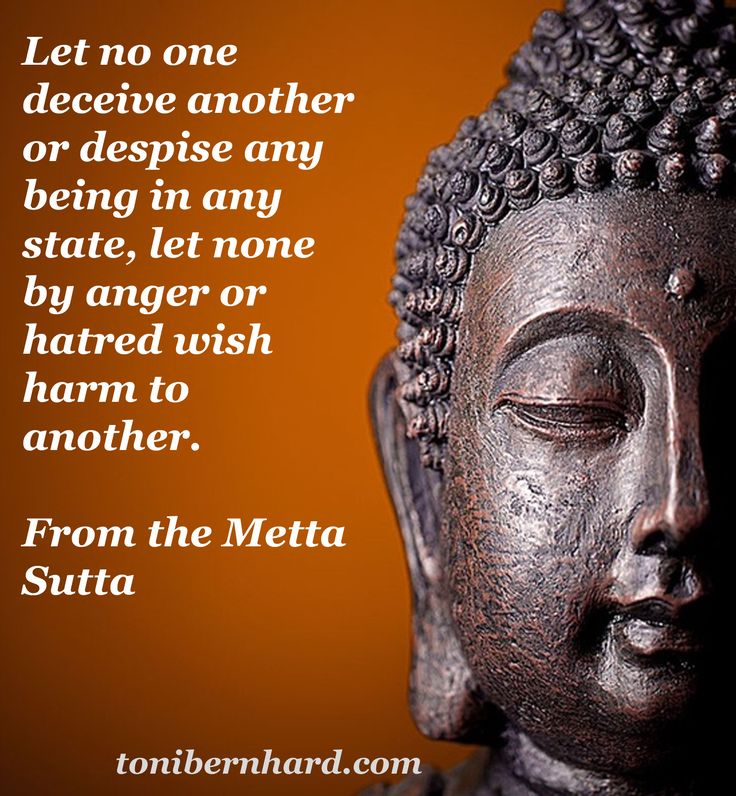 """""""Let no one deceive another or despise any being in any state, let none by anger or hatred wish harm to another."""" From the Buddha's Metta Sutta"""