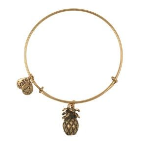 Pineapple Alex and Ani Bracelet- want in silver instead