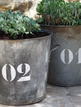 Old Rusty Metal Buckets...with numbers...filled with plants for the garden...