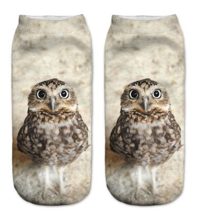 Fat Owl 3D Low Cut Angle Socks – PawzOutlet