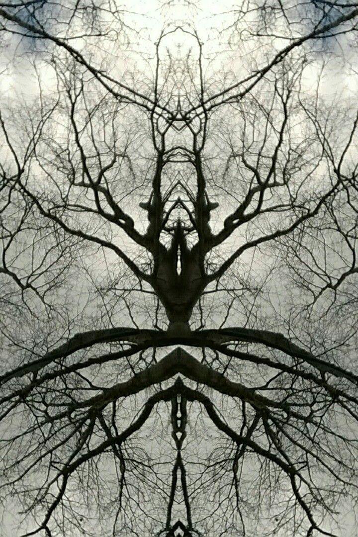 Ballet tree