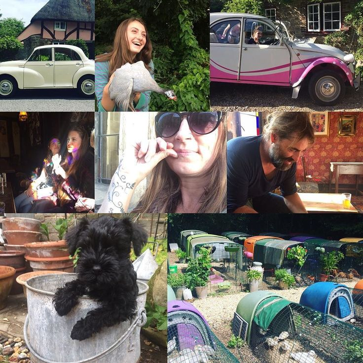 Goodbye Sussex Garden Poultry & hello Paisley & Co. Nancy joined the family so did the Morris Minor. Here to a happy healthy 2018!    #morrisminor #2cv #minischnauzer #lovedones #familyphotography #omlet #chickens @willow_mckenzie @hebe.mck