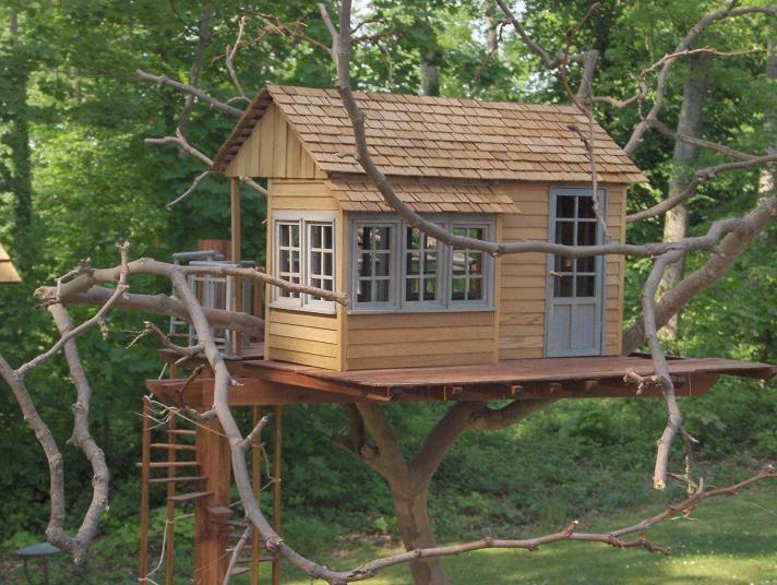 Plan D Une Cabane En Bois Construire Une Cabane Avec Des Palettes Apsip Com Tree House Designs House Small Wooden House