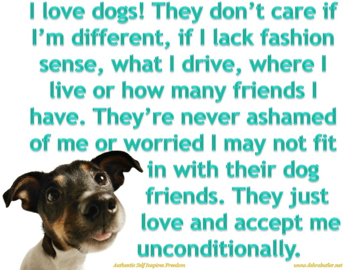 puppy love quotes - Bing Images