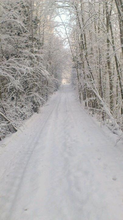 Winter in Hälsingland, #Sweden.