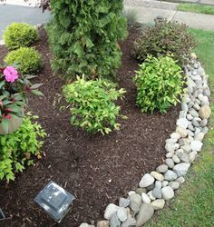 river rock border mulch florida landscaping - Google Search