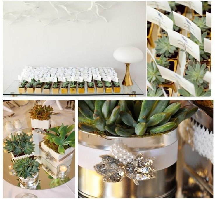 Cactus Wedding Decoration For You