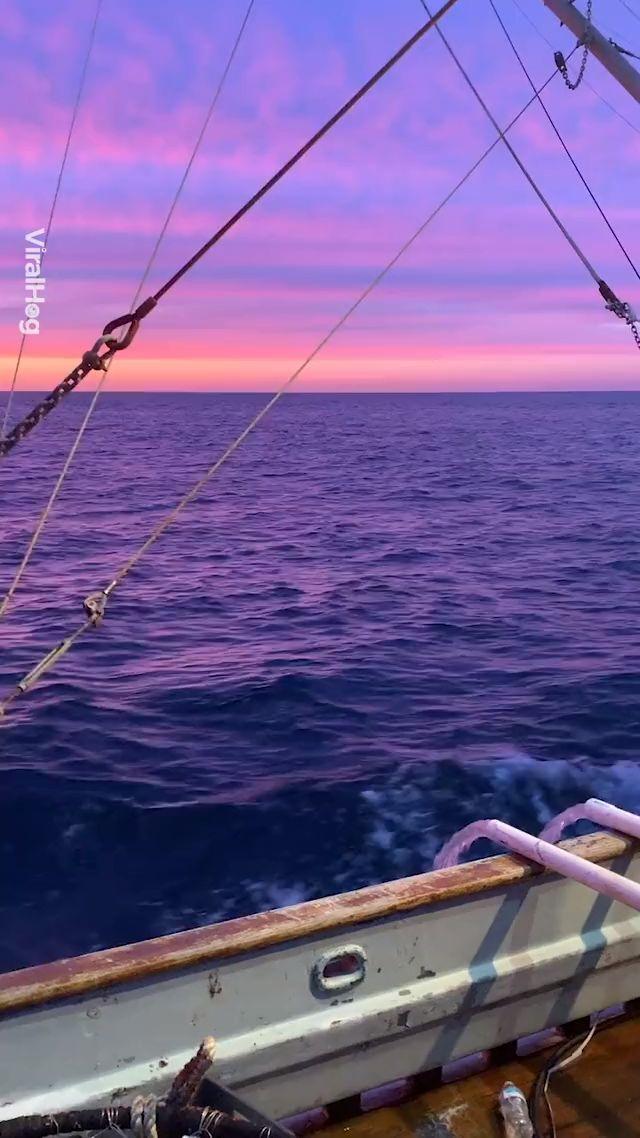 Der Sonnenuntergang vor der Küste von Oregon ist unwirklich! 😍
