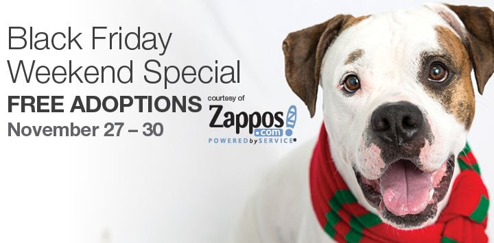 Adoption specials around the country This Black Friday through Cyber Monday, you can adopt your next best friend with no adoption fees! From November 27 through November 30, Zappos.com is sponsoring the cost of adoption fees for dogs and cats through Best Friends Animal Society, or one of our hundreds of participating Network Partners across the country.* And for every adoption, Zappos will also donate additional funds for our lifesaving work.**