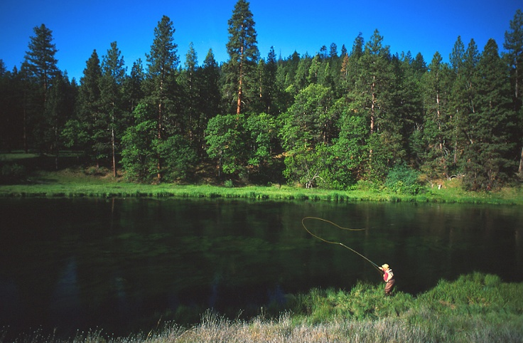 14 best fishing spots of northern california images on for Fly fishing northern california