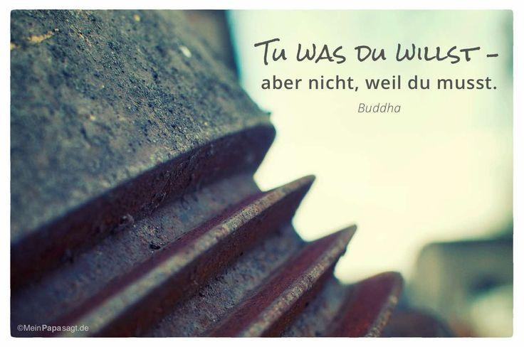 Mein Papa sagt...   Tu was du willst – aber nicht, weil du musst.  Siddhartha Gautama – Buddha    Weisheiten und Zitate TÄGLICH NEU auf www.MeinPapasagt.de