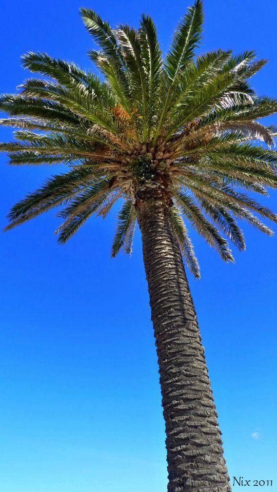 St. Kilda Beach, Melbourne, AU