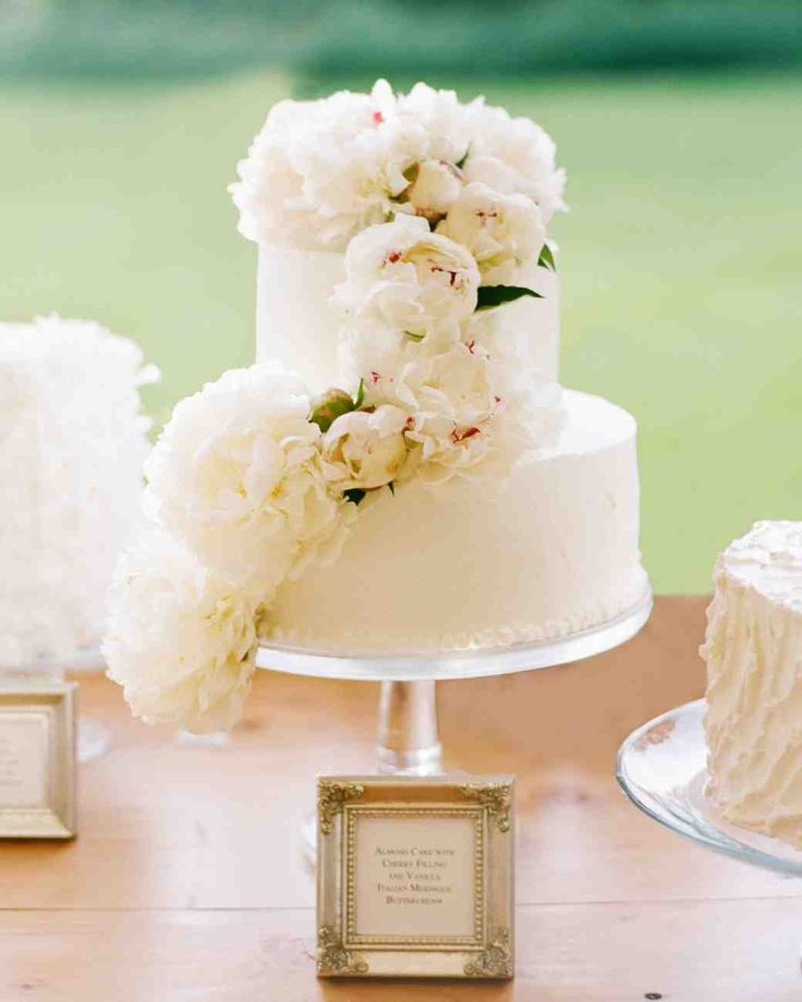 Spring Wedding Cakes That Are (Almost) Too Pretty to Eat | Martha Stewart Weddings - Laine and Rob served a selection of cakes by Go Girl Goodies at their May reception on simple glass cake stands. Among them was this almond cake decorated with white peonies.