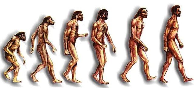 F D A Origen By Sammy Valencia Infographic Atheist Symbol Free Infographic Maker Human