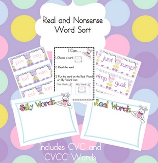 word work - real word/silly word
