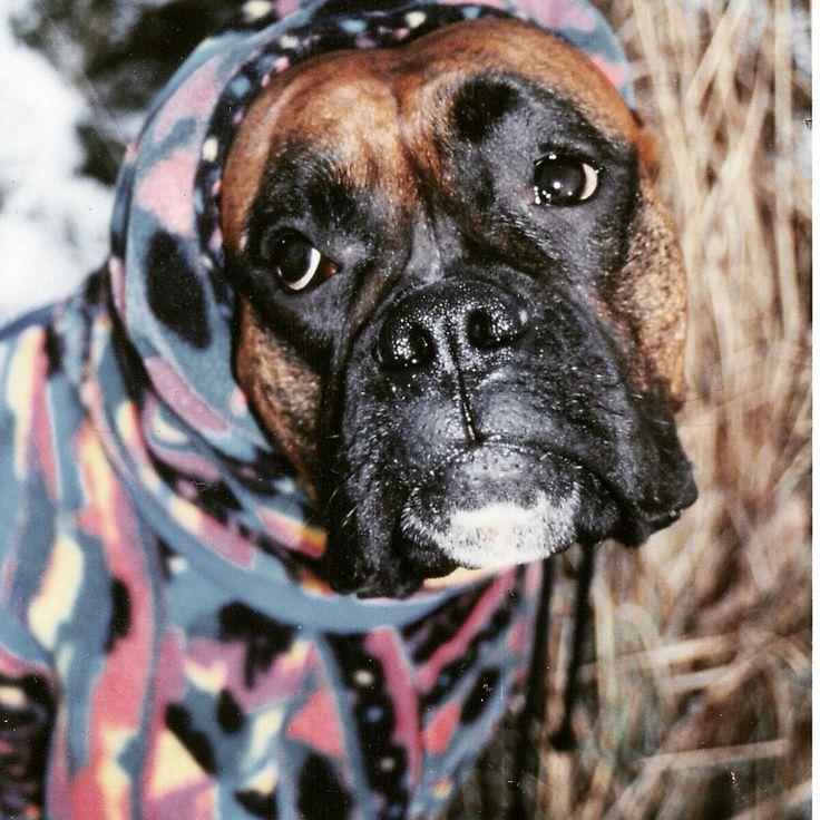 Max wearing fleece.