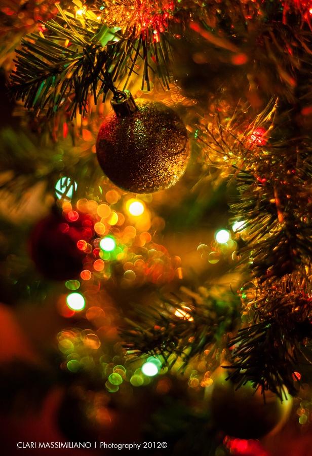 Xmas 1 By Massimiliano Clari Via 500px In 2020 Happy Merry Christmas Christmas Pictures Merry Christmas Everyone