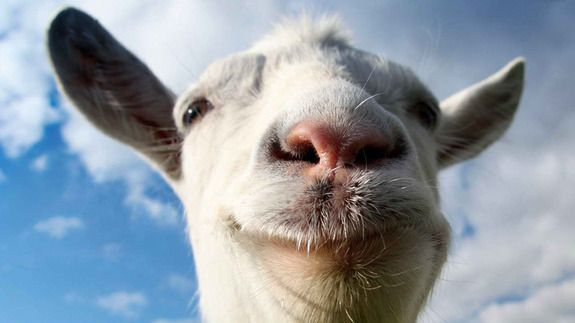 'Goat Simulator' Hops Onto Mobile to Eat Your Cans