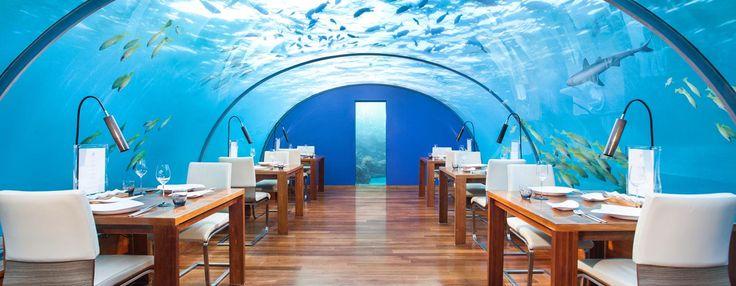 Das Restaurant Ithaa hat Wände aus Plexiglas und ist das weltweit erste Unterwasser-Restaurant. Hier haben Sie täglich Gelegenheit, beim Mittag- oder Abendessen das Korallenriff aus nächster Nähe zu bestaunen.