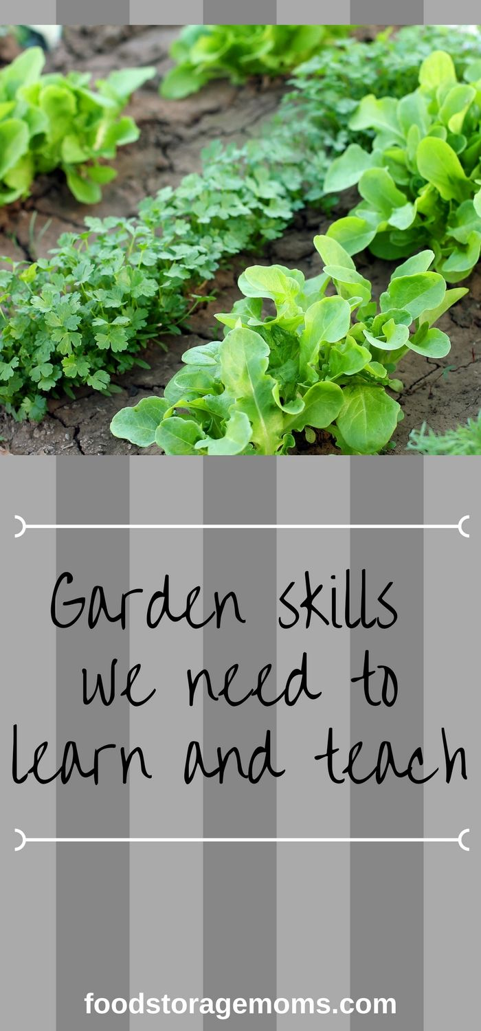 Garden skills we need to learn and teach (1)