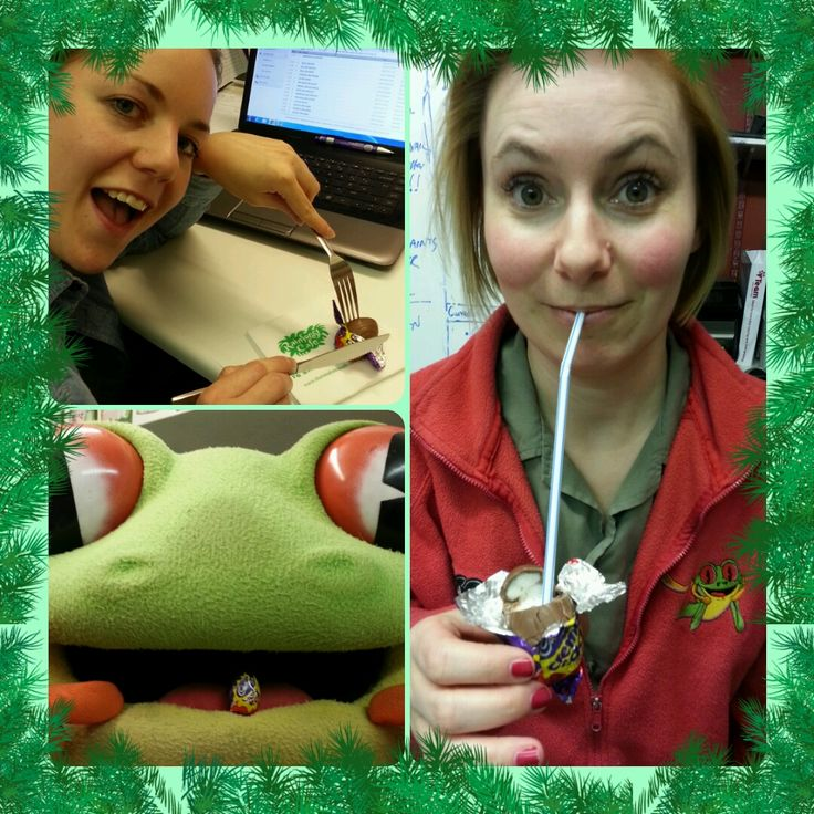 #HowDoYouEatYours more Easter fun in the Sales and Marketing Office! http://www.therainforestcafe.co.uk/jobs/