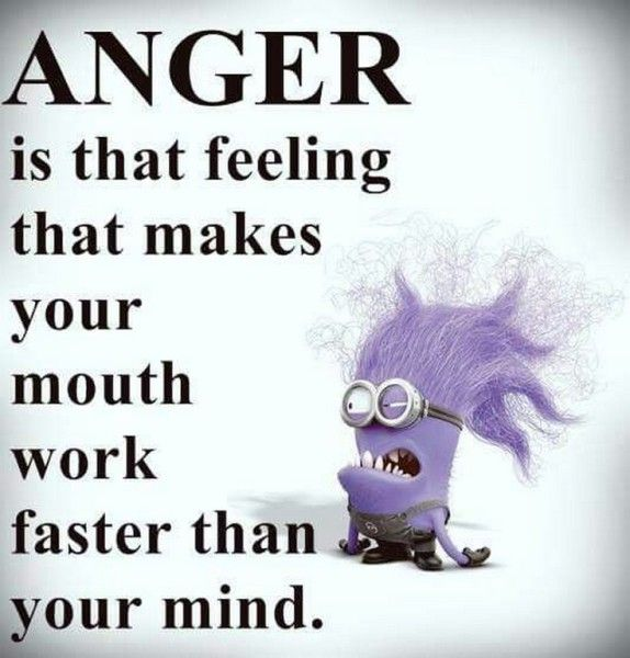 Funny Anger Quotes: 1000+ Funny Anger Quotes On Pinterest