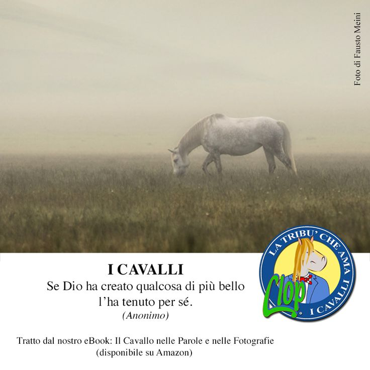 I #cavalli, se Dio...