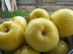 Продукты на 2 кг яблок.2 кг небольших яблок3 л воды150 г сахара2 ст. л. соли150 г медаЛистья винограда и смородины1. Яблоки промыть.Сложить в большой эмалированный таз.2. Соль, сахар и мед смешать …