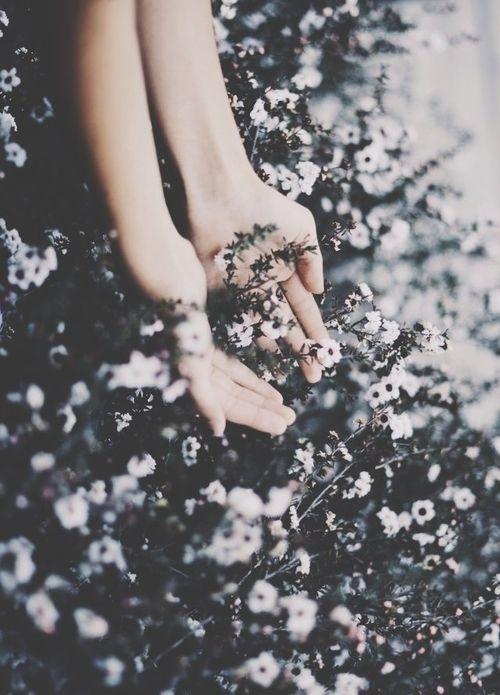 Flora y mano