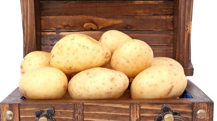 http://news.xpertxone.com/eating-potatoes-four-times-a-week-may-up-high-blood-pressure-risk/