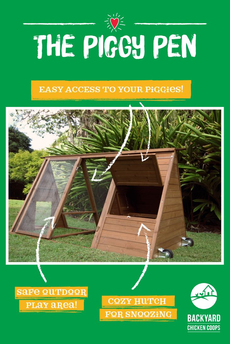 The Piggy Pen is the perfect new home to house your precious little Guinea Pigs in! They'll love snuggling up in the cozy hutch or playing within the safety of the enclosed outdoor space. Find out more about the Piggy Pen here, https://www.backyardchickencoops.com.au/other-enclosures/guinea-pig-hutches/piggy-pens/   #loveyourguineapigs #guineapighutches  #thepiggypen