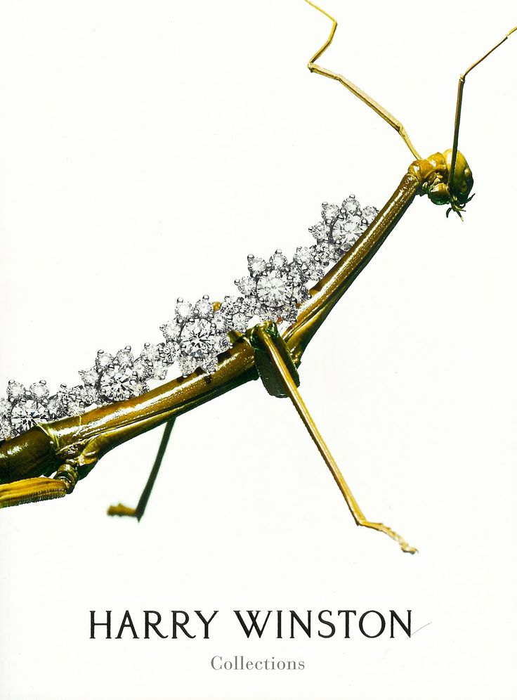 Harry Winston-Praying Mantis | Insect & Spider Jewelry | Pinterest