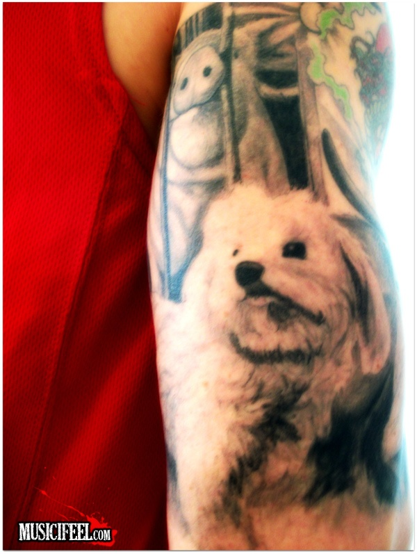 New IFEEL tattoo... Say hello to princess Luna and Pig Curious. Luna represents her (unconditional)loving kind and pig remains curious regardless of the horrible conditions she is put in. They are a reminder (along with Lion the King, rooster Mirek and cow Tetica) what inspires more music to come out of me. www.MusicIFEEL.com