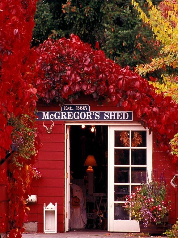 Inviting store~ McGregor's Shed in Silverdale, Washington State