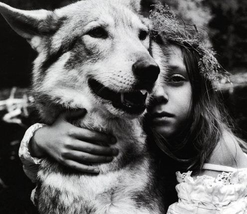 """wolf """"Bone by bone, hair by hair, Wild Woman comes back. Through night dreams, through events half understood and half remembered...""""  ― Clarissa Pinkola Estés, Women Who Run With the Wolves: Myths and Stories of the Wild Woman Archetype"""