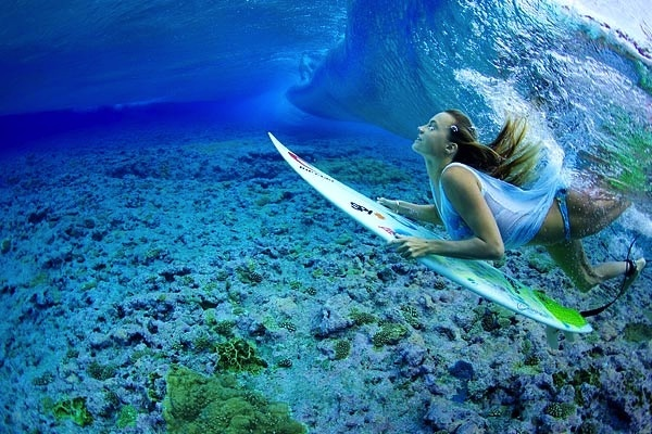 underwater surfer girl desktop - photo #19
