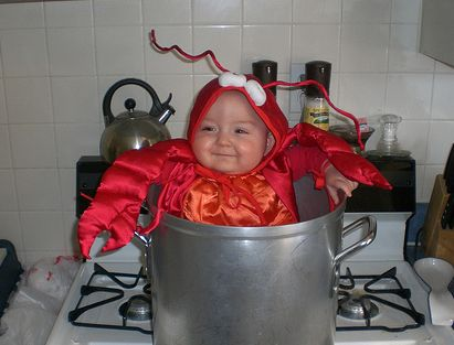 http://cutebabypictures.org/d/15252-1/In+pot+lobster+baby+costume+for+halloween.PNGStreet Food, Funny Halloween Costumes, Baby Costumes, Costumes Halloween, Baby Halloween Costumes, Baby Lobsters, Baby Dresses, Lobsters Baby, Costumes Ideas