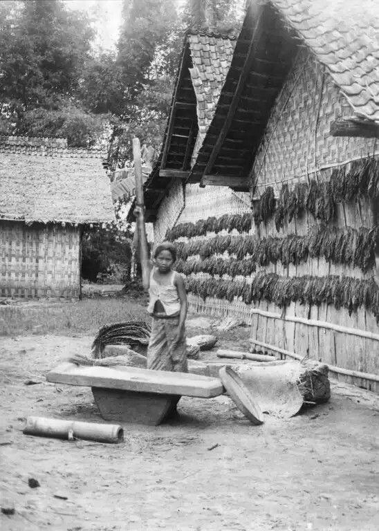 1936 -1937 : Java Tjepoe
