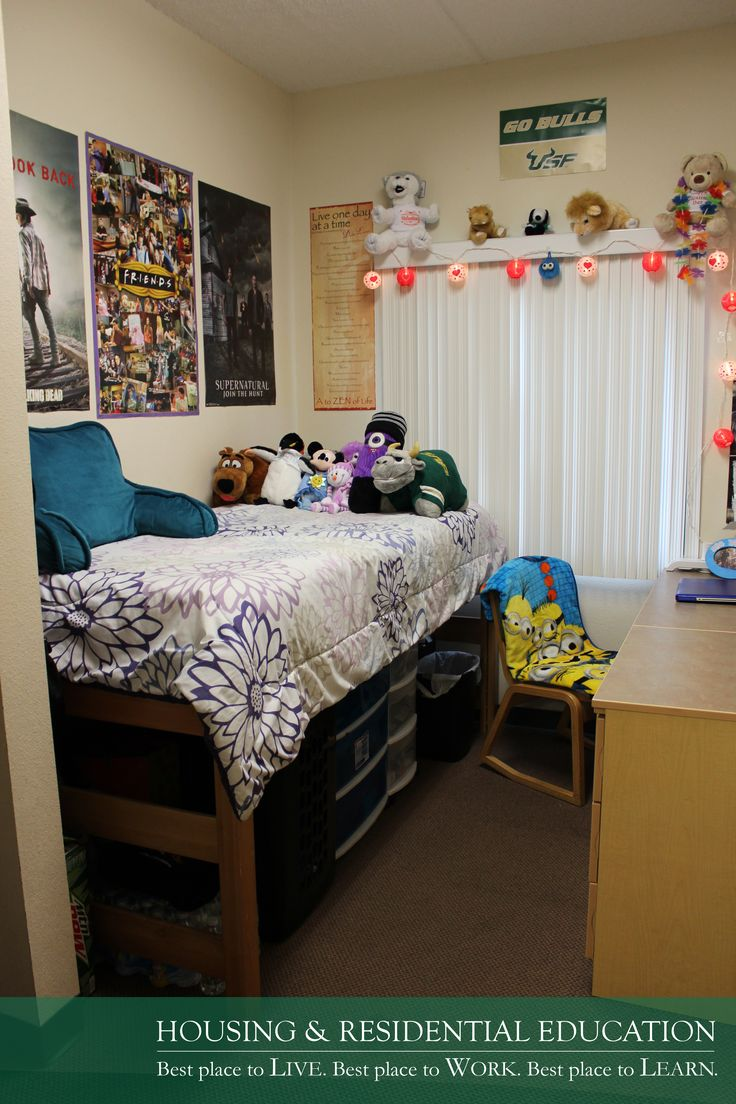 one bedroom apartments near usf 100 best apartments