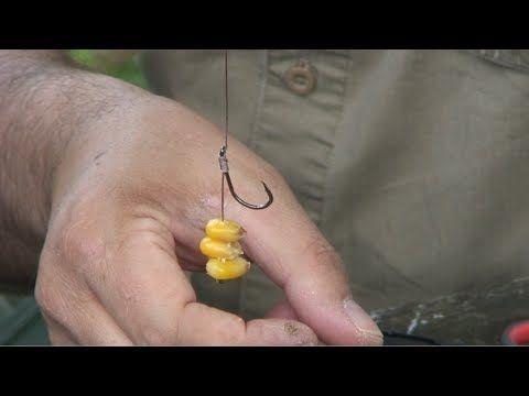 Les meilleurs producteurs des lignes pour la pêche