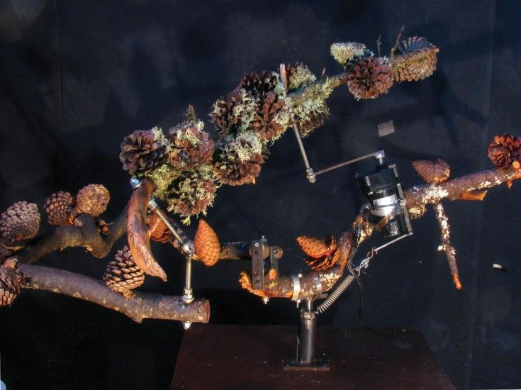 Kal Spelletich Squared Robot Tree, 2014 Monterey Pine, electronics, mixed media 5 x 4 x 3.5 feet