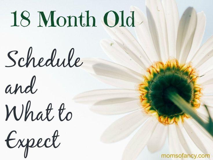 18 Month Old schedule, Development, Sleep, and nutrition. momsofancy.com