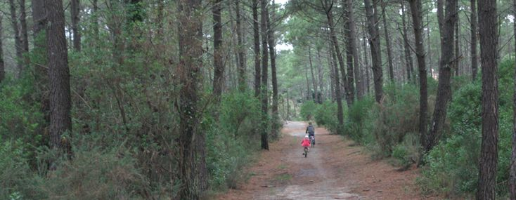 French cycling holiday at Lacanau Ocean, including part of La Vélodyssée, the Atlantic Coast EuroVelo 1 bike route. By Lynette Eyb. - Freewheeling France