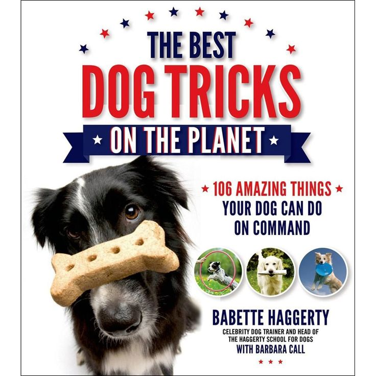 Macmillan Publishers St. Martin's Books - The Best Dog Tricks On The Planet