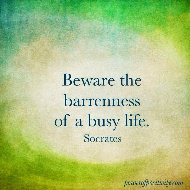 Beware the barrenness of a busy life. - Socrates #literary #quotes