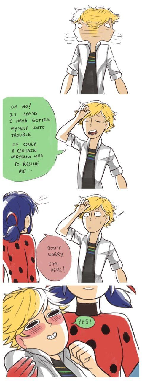 ♡ Miraculous Ladybug ♡ Adrien x Ladybug